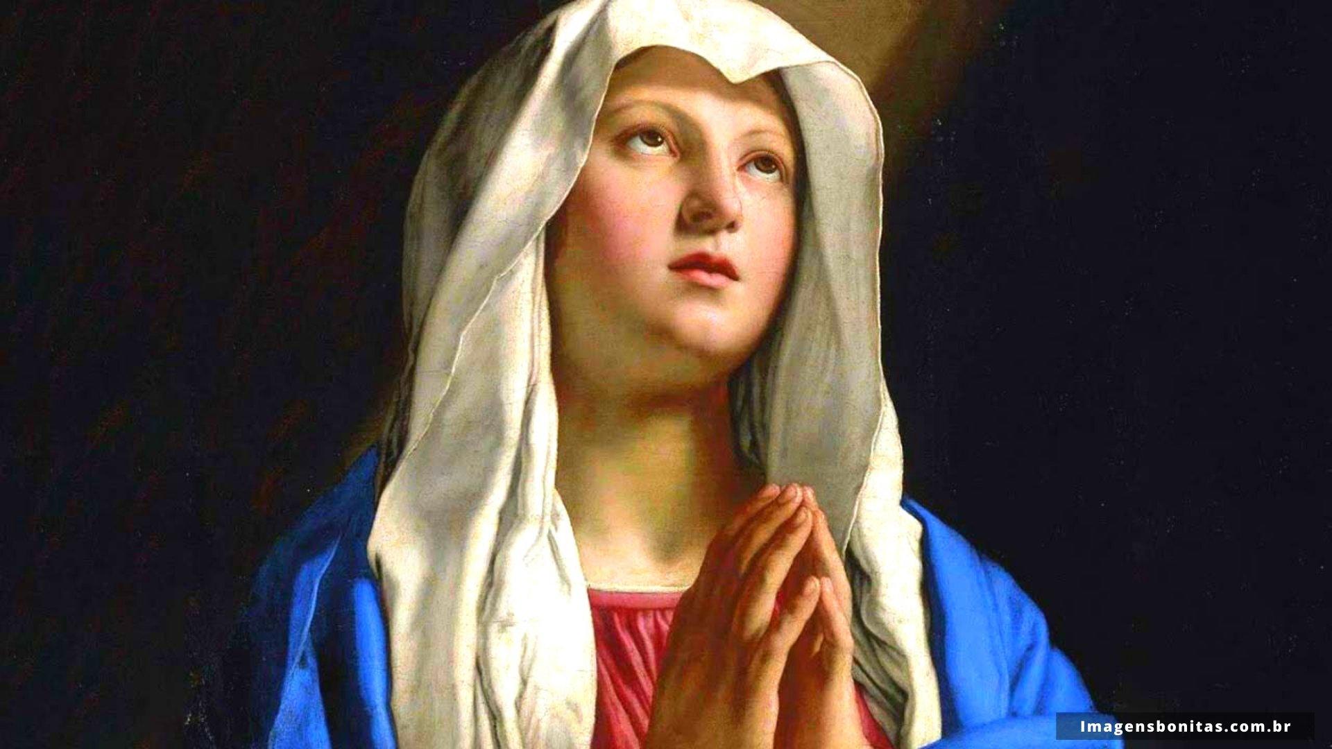 Wallpaper da Virgem Maria
