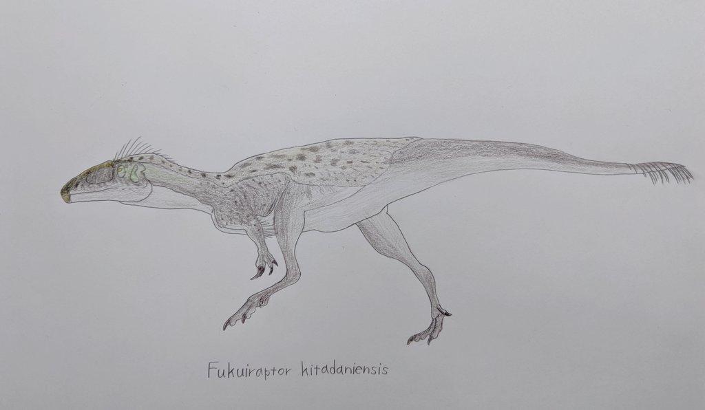 カルノサウルス類