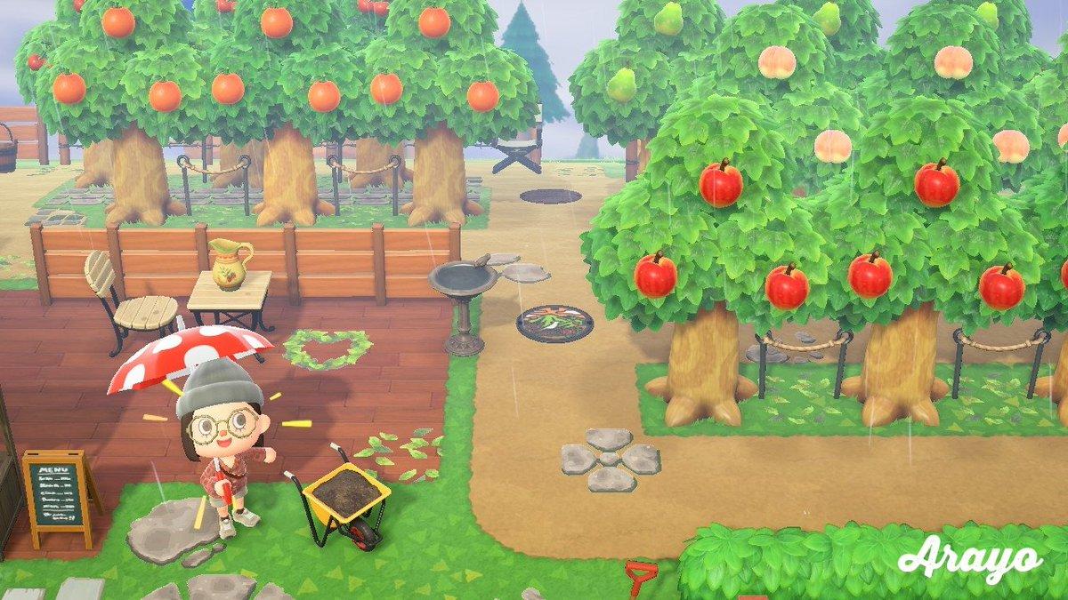 どうぶつ の 森 果樹 園