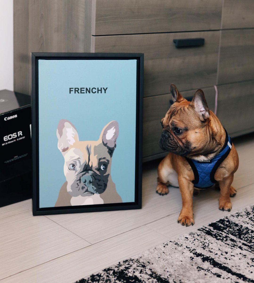 """Iconic Paw on Twitter: """"Frenchy keeping a close watch on her close up! 😍  Custom Illustrated Pet Portraits 📸 @kaicealea  You can have one of these  works of art made for"""