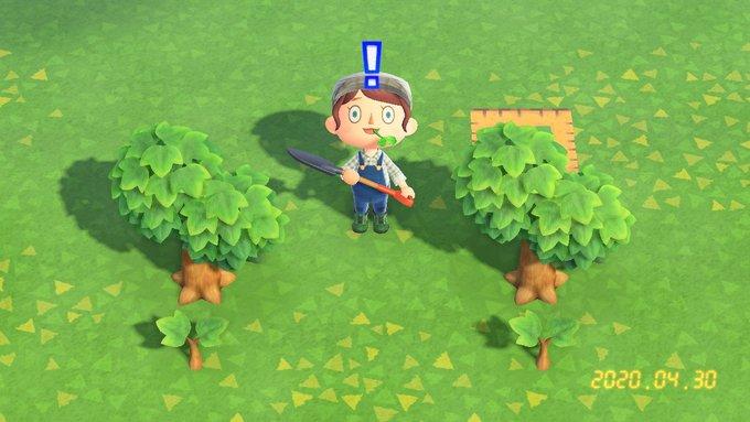 木の成長 あつ森