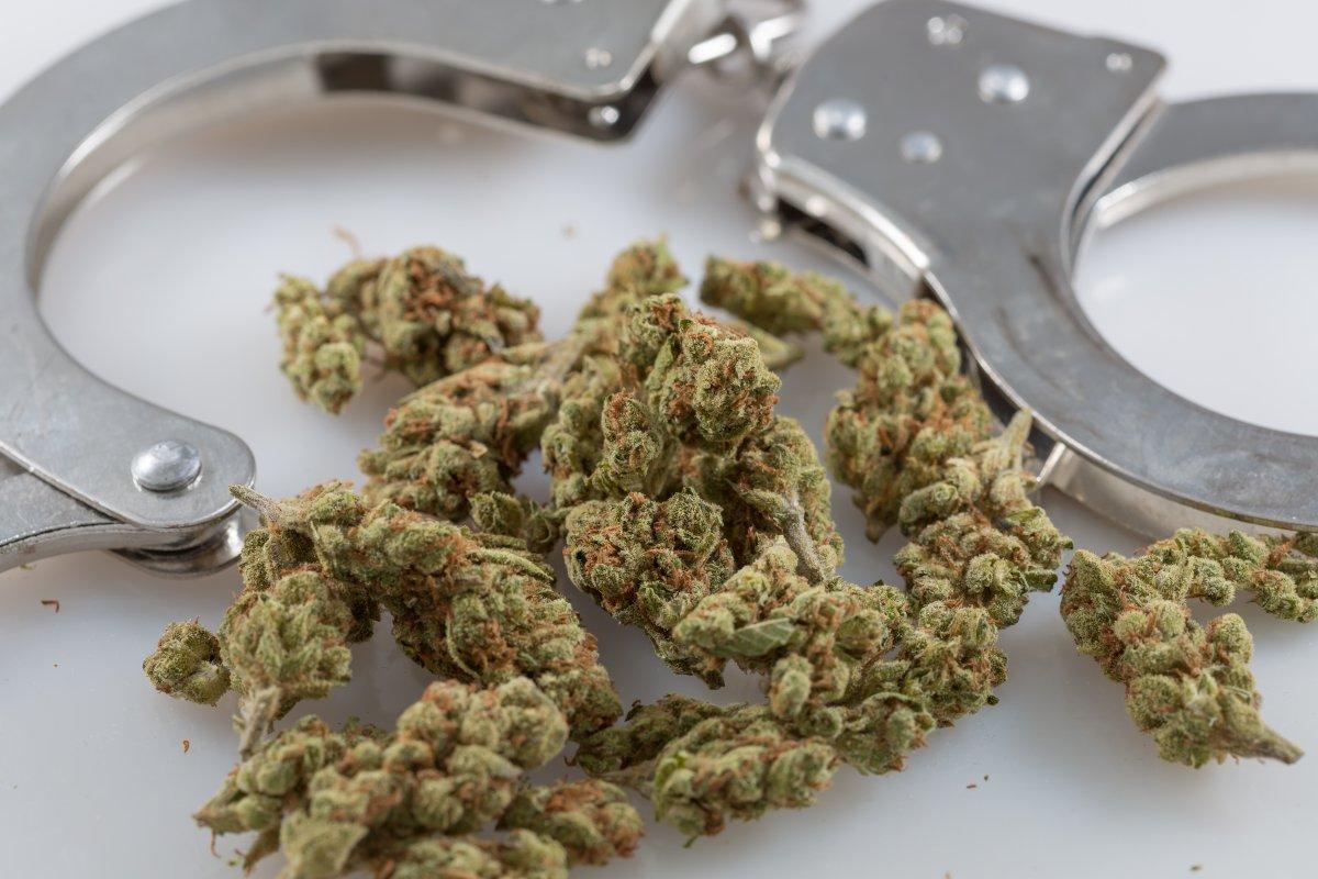 Паника при употреблении марихуаны как делать химку из конопли
