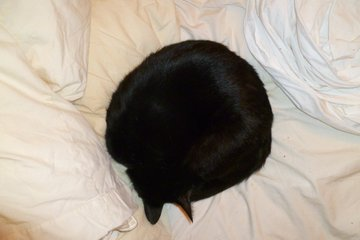 Hades in a perfectly round void ball