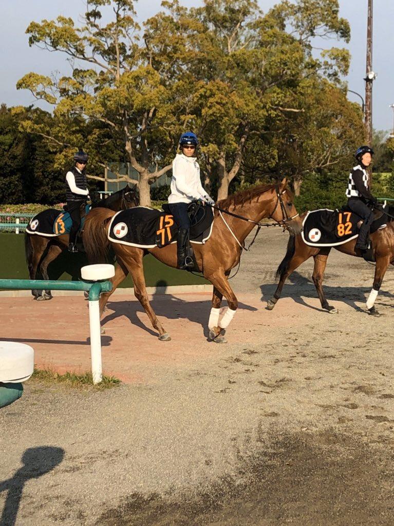 【競馬】戸崎圭太騎手、調教復帰「やってやりますよ!」
