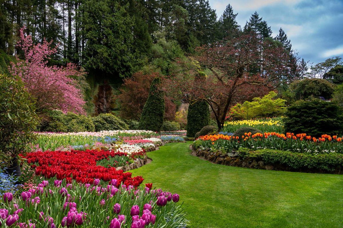 The Butchart Gardens Butchartgardens Twitter