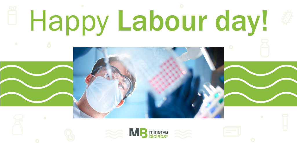 Happy labour day for