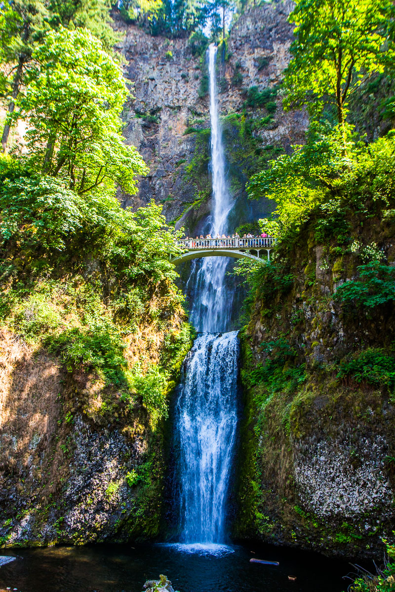 If you love #waterfalls, hiking, wineries, fruit picking & scenic drives, Columbia River Gorge in Oregon is where you want to visit: https://bit.ly/2SoO2Sy #oregon #Travel #traveltips @TravelOregon #familytravel #roadTrippic.twitter.com/kH50GxzmWt  by Caz Craig Makepeace