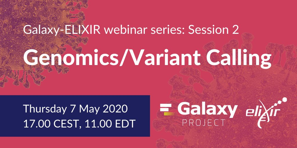 The second session in the @galaxyproject-ELIXIR webinar series will present the analysis of the #SARSCoV2 genome: https://t.co/HOC9eTuPKl Join us on Thursday 7 May at 17.00 CEST,   ❗️Register: https://t.co/u9hYHlNDne   #ELIXIRvsCOVID19 @denbiOffice @GalaxyAustralia @ELIXIRnodeBE https://t.co/fuZiqZV2ra