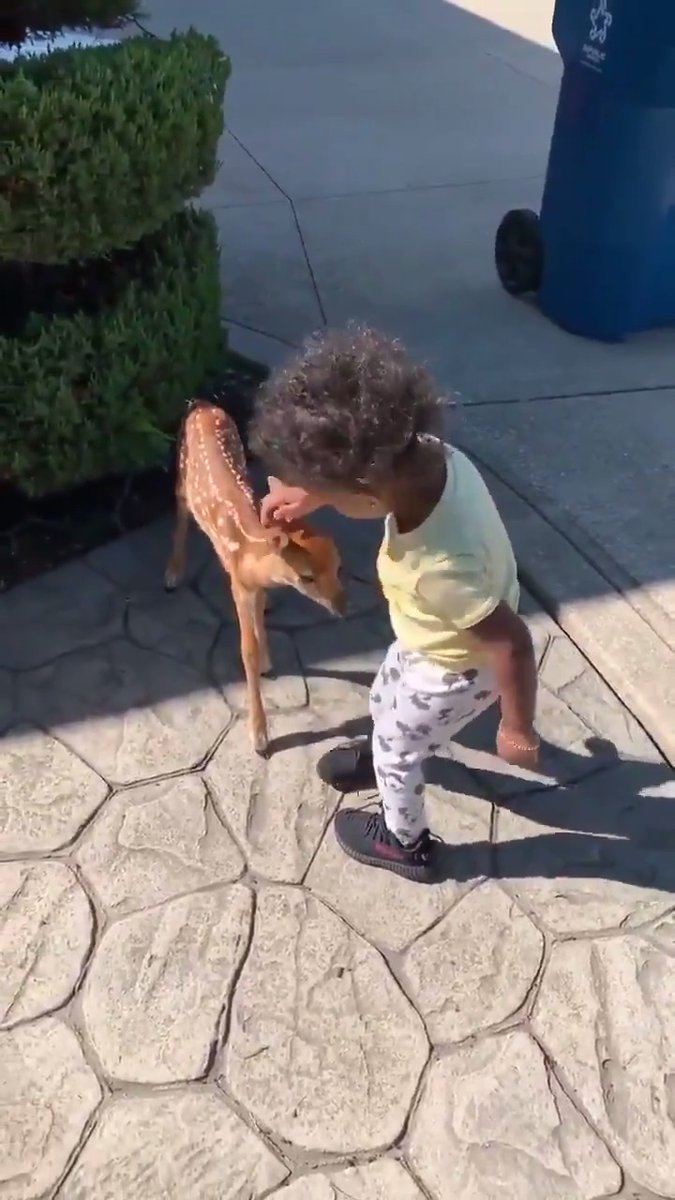 If you need a little cute animal content today... Were just looking back at when Jarvis Landrys daughter met a fawn. (Via @God_Son80)