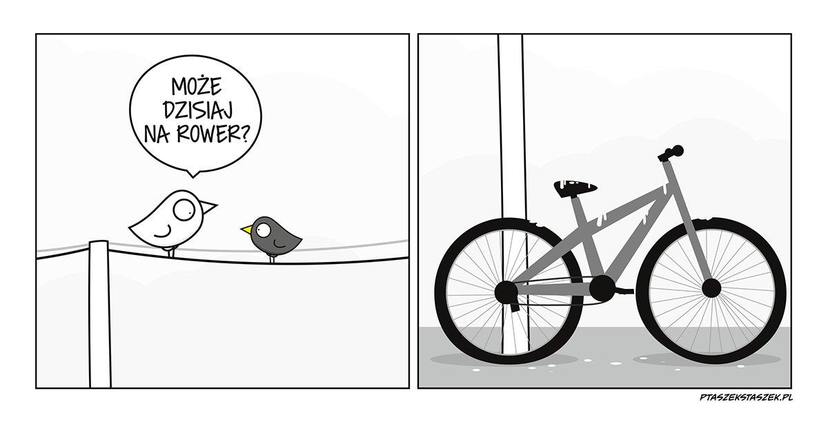 rowerowanie hashtag on Twitter