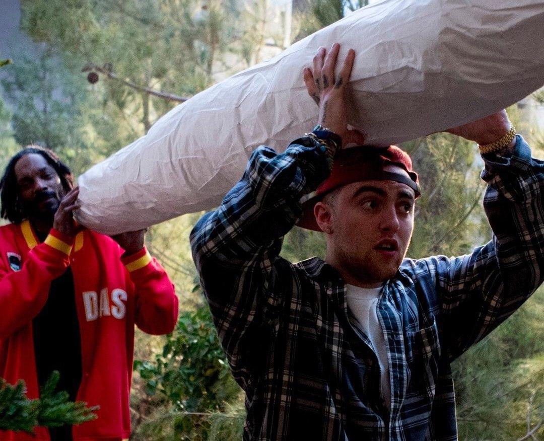 Каста марихуана купить семена конопли автоцветущие