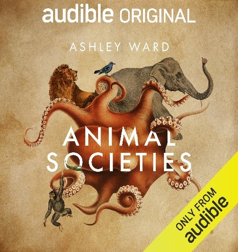 Excited to announce that my new book Animal Societies will be out this Thursday as an audiobook via Audible. Part memoir of animal adventures, part natural history, and, if you can stand it, delivered in my own dulcet tones https://t.co/eGKaJ7VPOM
