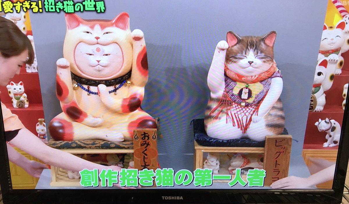 マツコ の 知ら ない 世界 招き猫