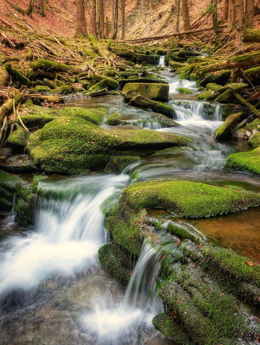 Z nedelni prochajdy na Slavic...#mameradibeskydy #beskydy #moravka #forests #naturephotography #photographer #Waterfall #water #fotimecesko #milujemehory #animalspic.twitter.com/7HVfFEzxko