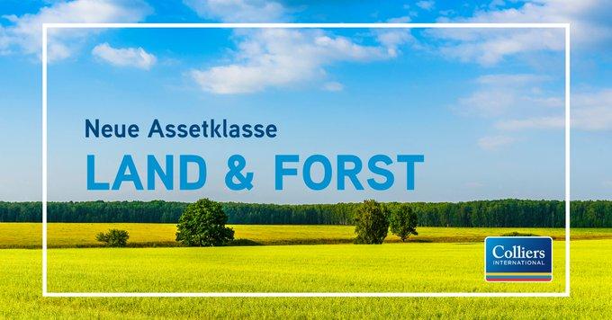 Colliers hat Anfang April die neue Assetklasse Land & Forst etabliert. Geleitet wird der Bereich gemeinsam von Eckbrecht von Grone und Nils von Schmidt. Alle Informationen zum neuen Geschäftsfeld gibt's hier: #landwirtschaft #forstwirtschaft #investment t.co/P0reu8la17