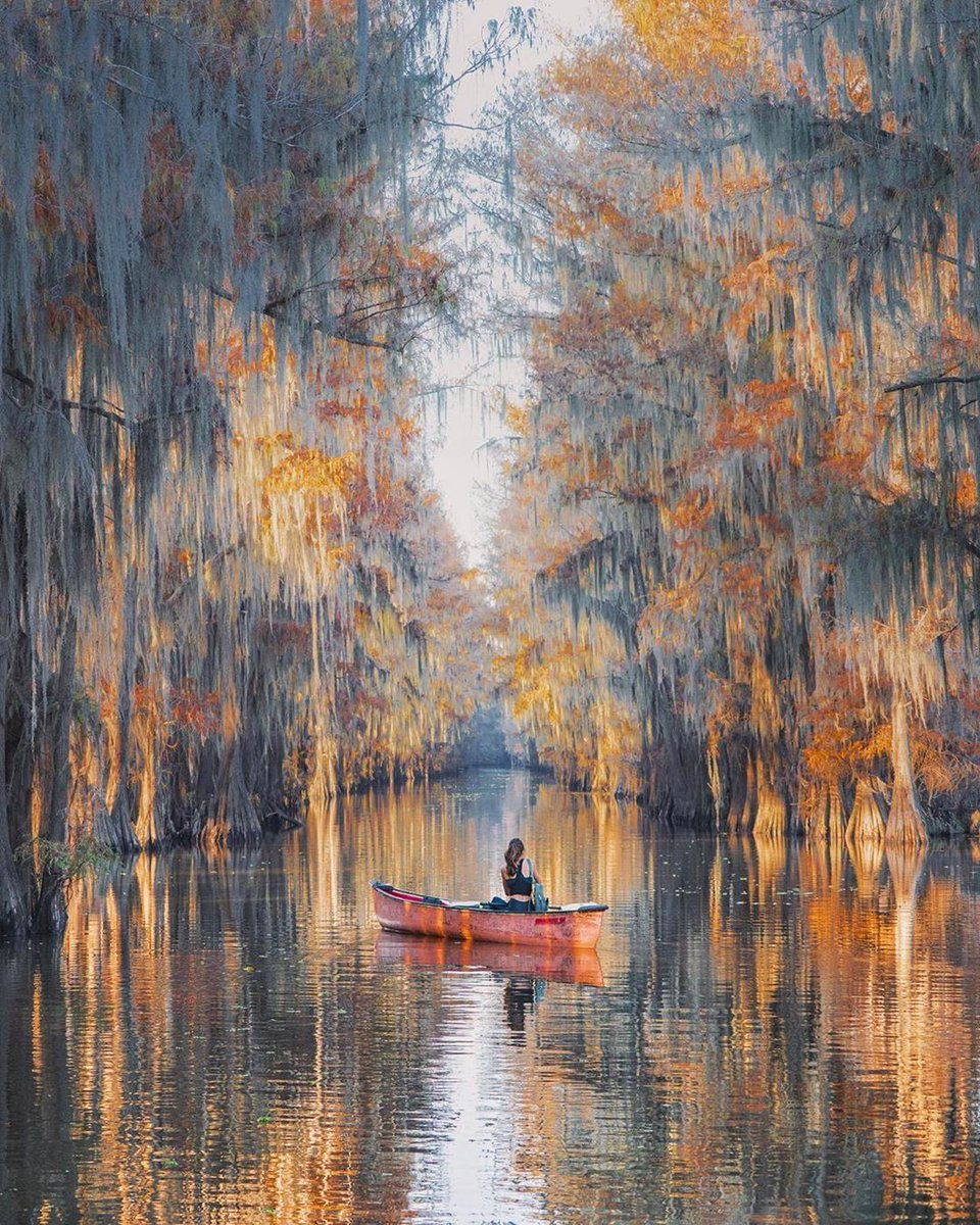 #Wanderlust #WanderlustXL #OurWorld #ThilanW  RT WanderlustXL: RT WanderlustXL: These trees in #Texas look like a painting. #DiscoverUSA #ExploreUSA #VisitUSA #USATourism #travelstories #beautifuldestinations #natures #neverstopexploring #discoverearth #… pic.twitter.com/paDgiM0dxv