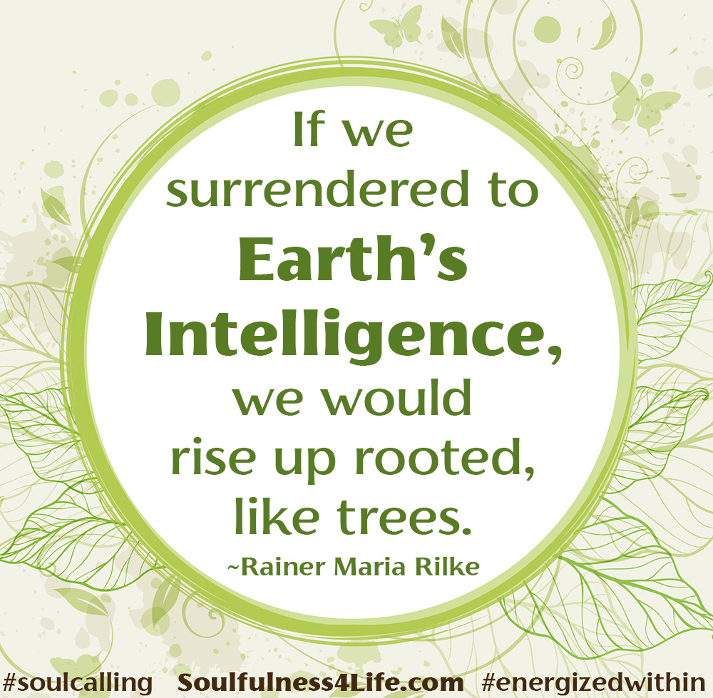 RISING UP ROOTED...  Happy #EarthDay!  #WednesdayWisdom #quotes #inspiration #mindfulness   #roots #rooted #earth #growth #soulfulness #healing #transformation #mind #soul #RiseUp https://t.co/Fo0Uh01O1P