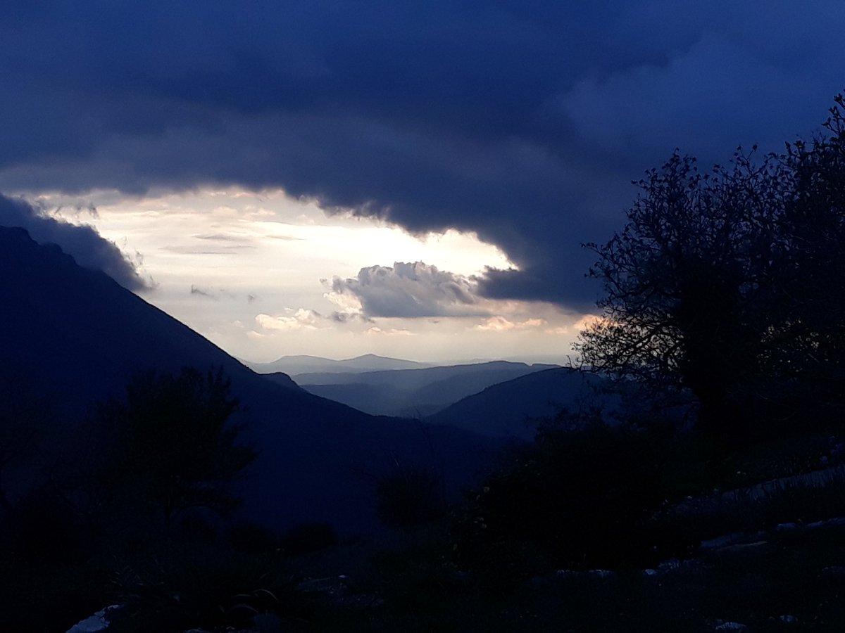 Hier #journeemondialedelaterre nuages sombres mais frange d'or. Ce matin premier @coquelicots_ & capture de 2 essaims. Le rucher se reconstitue @hub_laferriere @RiouxRemy @PhilippeJahshan @cdion @valerecorreard @LaTacfi @audreygarric @FabSintes @SophiaAram https://t.co/VRKkW0Oe2G