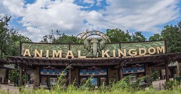 Pour terminer cette #JourneeMondialeDeLaTerre, le parc  « Disney's Animal Kingdom » fête ses 22 ans.  Le parc a ouvert le 22 Avril 1998 à Walt Disney World et est actuellement l'unique par Zoologique du groupe Disney!   ©️DLRP https://t.co/pgmuJylxZ7