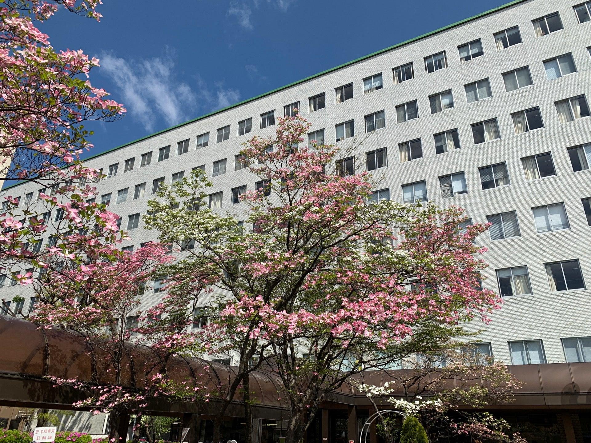 附属 日本 病院 医学部 大学 板橋