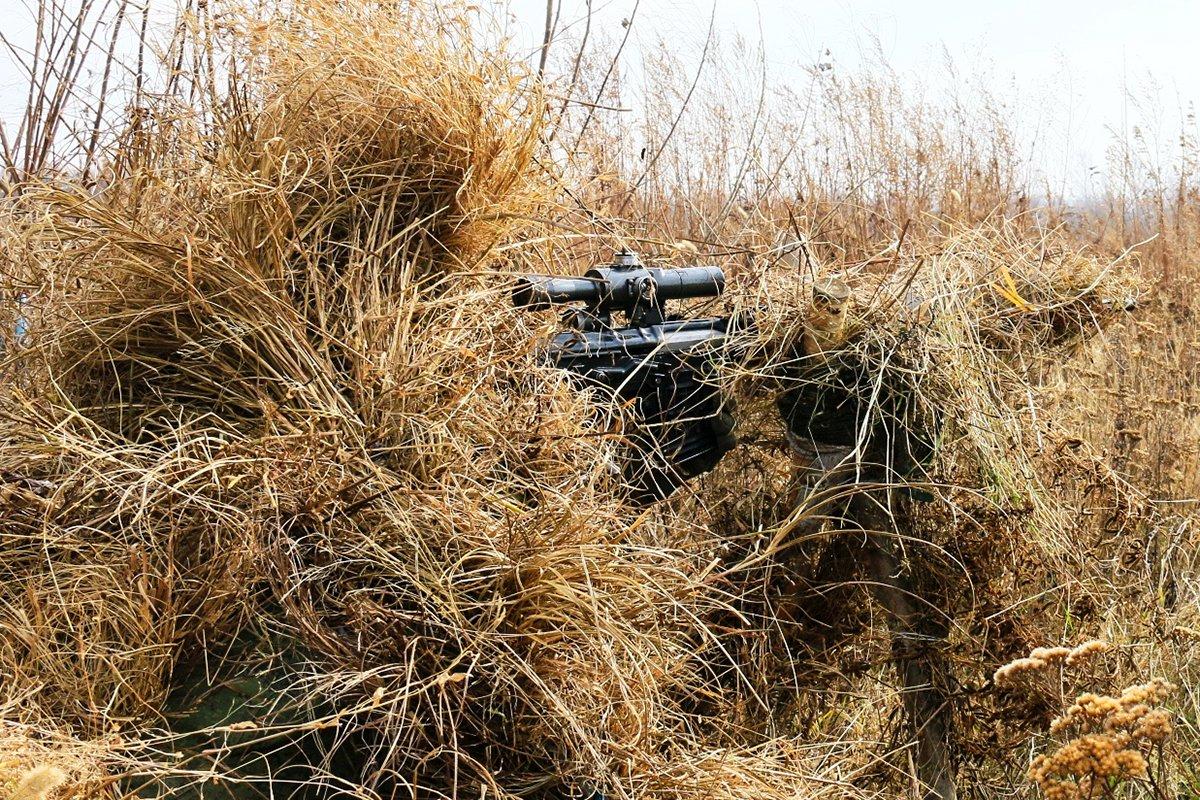 сижу поздравления с днем снайпера растет