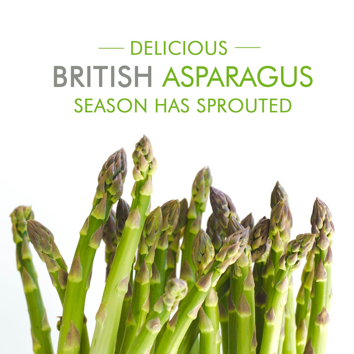 British Asparagus season has officially started! We only have around 8 weeks of the year to enjoy this fantastic produce. It will be available in the Market from our traders #eatfreshinbrum #britishasparagus #theseasonishere #birmingham #wholesale #freshproducepic.twitter.com/MoG0MvhQoS