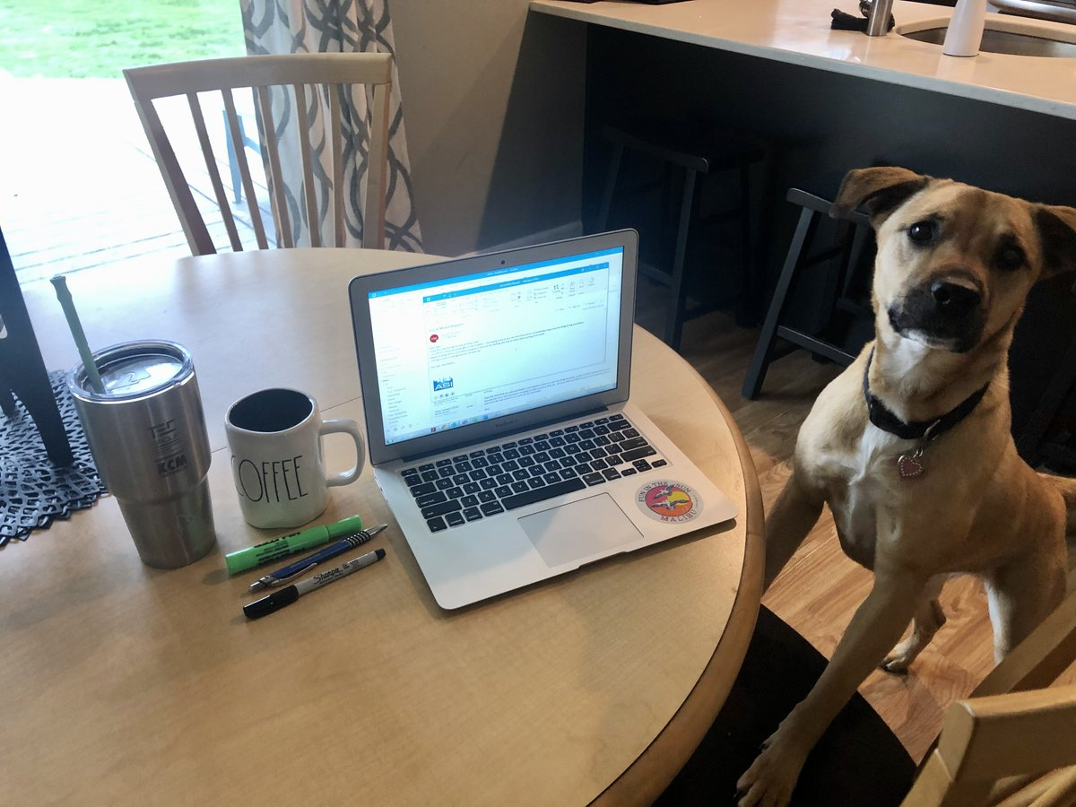 Our staff is getting the job done at home, with some extra paws! #Taylor'spup #homework #canihelpyou? https://t.co/EYcSWnAJ0m