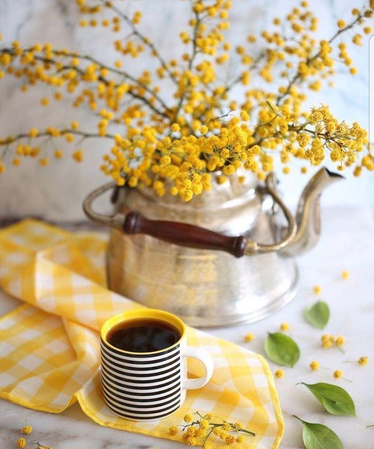 картинка весеннее утро с кофе описание всех действий