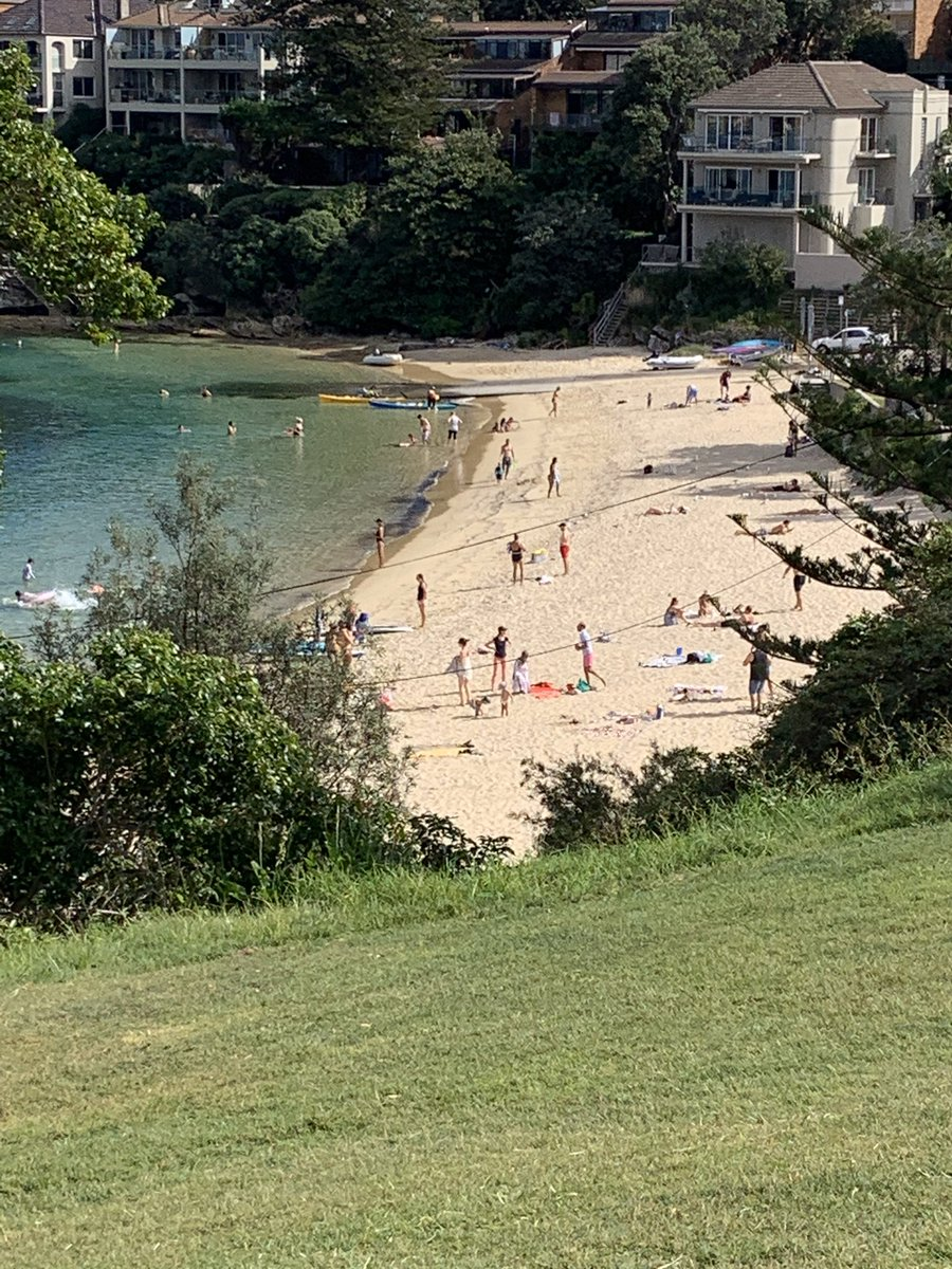 Not much exercise happening down at Little Manly beach  either. #littlemanly #Social_Distancingpic.twitter.com/RLXqDiqHzq