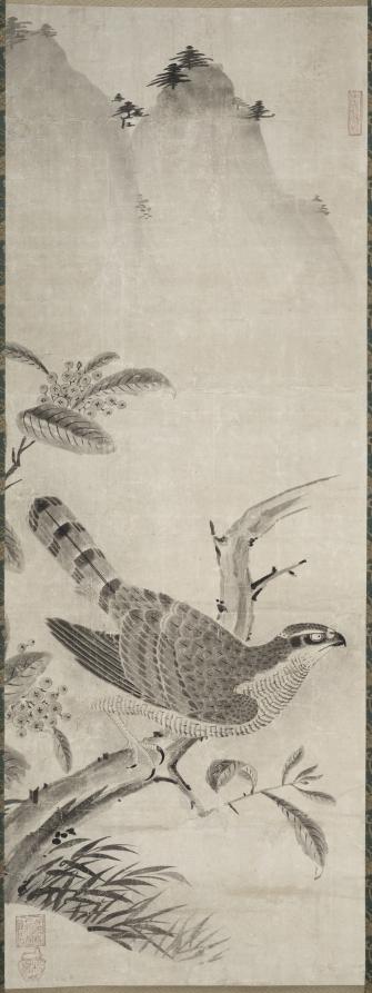 Hawk, Masayoshi Fujiwara, mid 1500s clevelandart.org/art/1985.245 #clevelandart #museumarchive