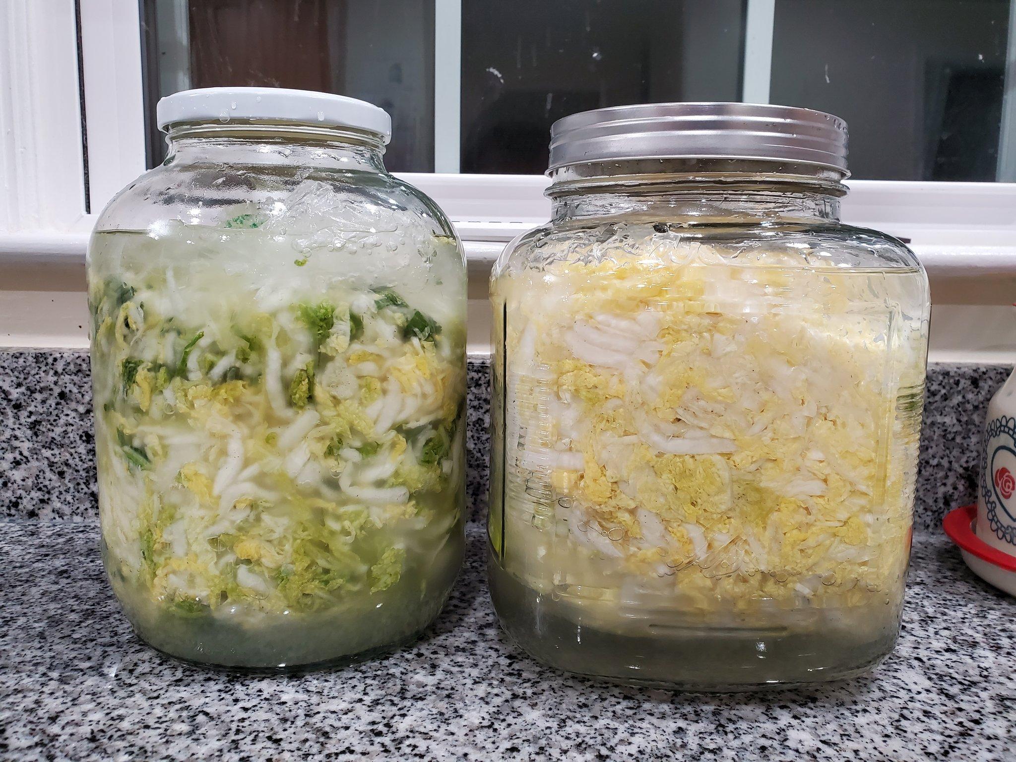 美国家常东北酸菜的简易做法