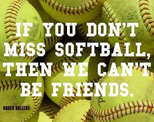 WHHS Softball (@WHHSSoftball1) on Twitter photo 10/05/2020 13:52:20