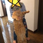 苦手な甥っ子に捕まってしまった!猫の顔が凄い!
