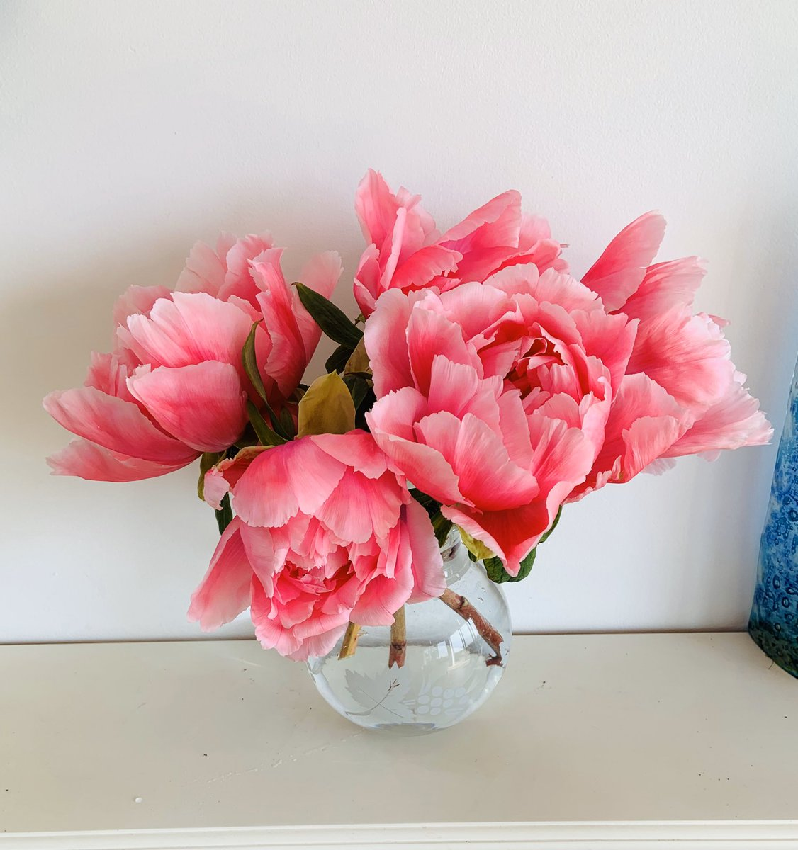 A Punnet of Peonies... #garden to #home #Peony #pink  pic.twitter.com/j045h6CN8c