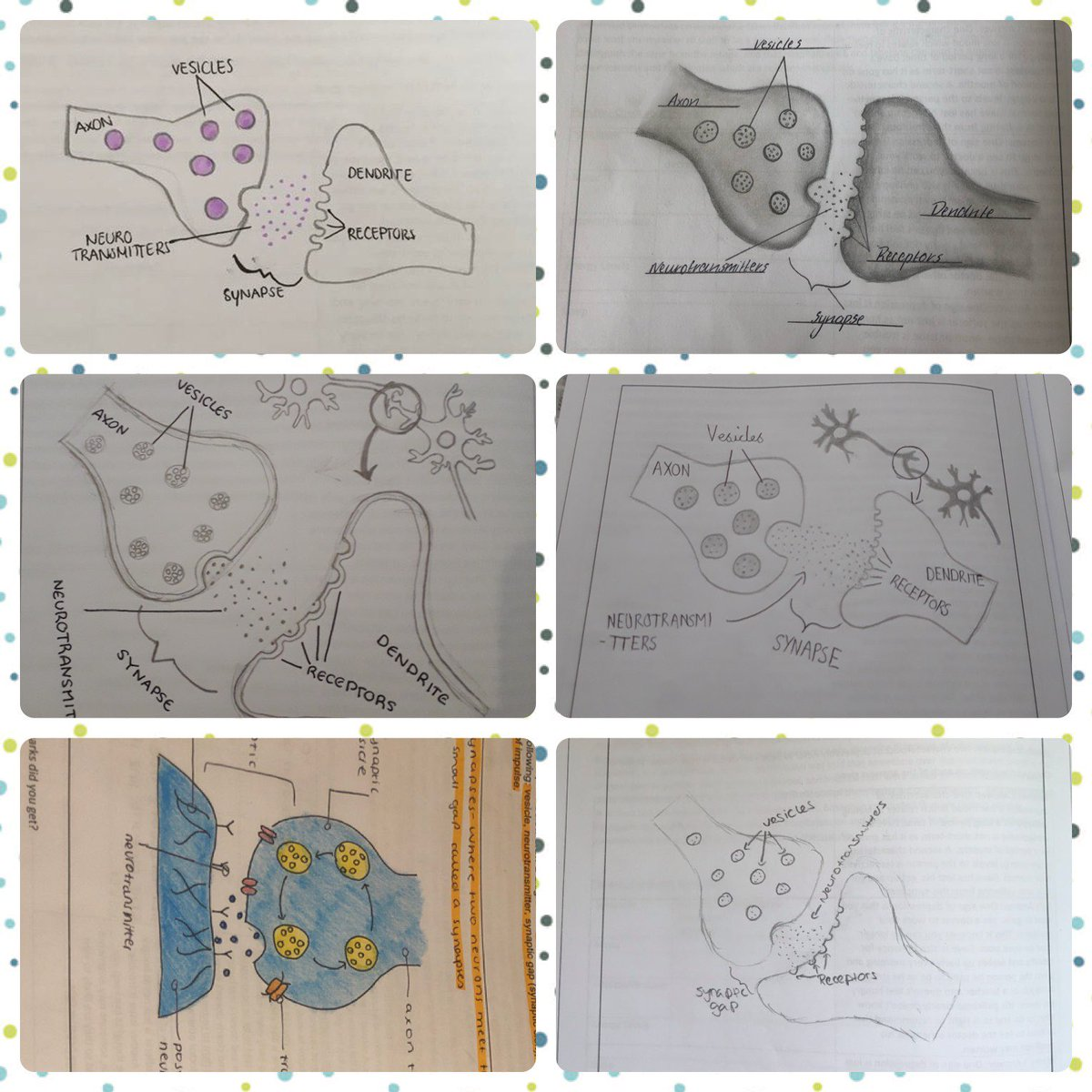Some fantastic sketches from our Year 10 Psychologists last week!