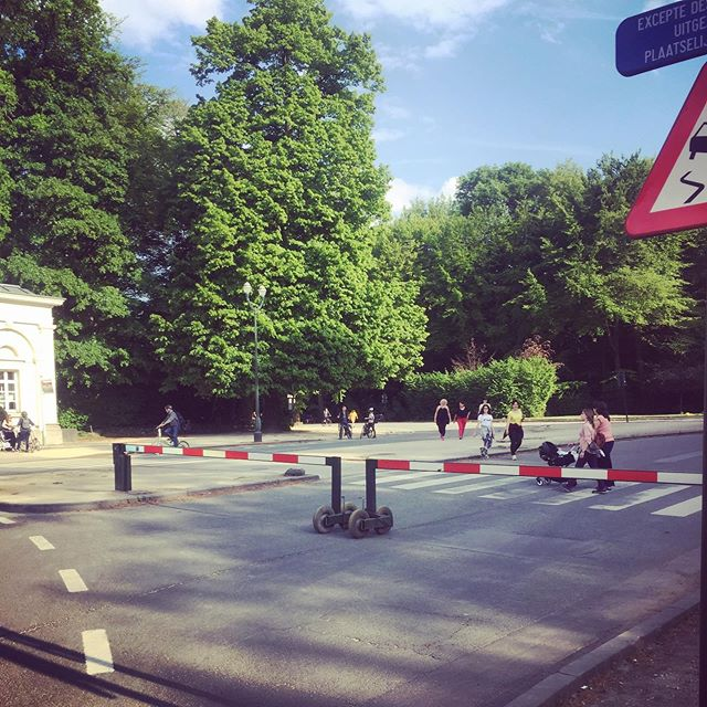 Brussels upgraded : put a barrier and you get a Central Park instead of a highway. How could you not want this for ever?  #brussels #park #centralpark #boisdelacambre #bike #publicspace pic.twitter.com/H0UciGNOVN