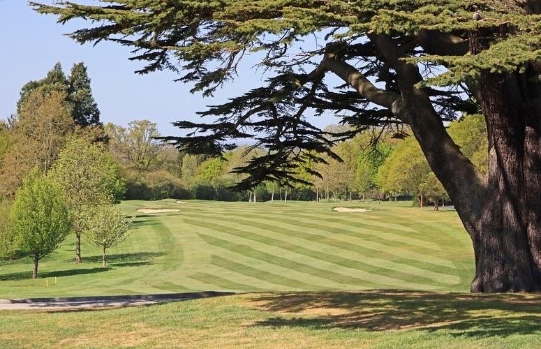 The comeback is always stronger #brookmansparkgolfclub #golfcourse #brookmansparkpic.twitter.com/jv6qZO15bs