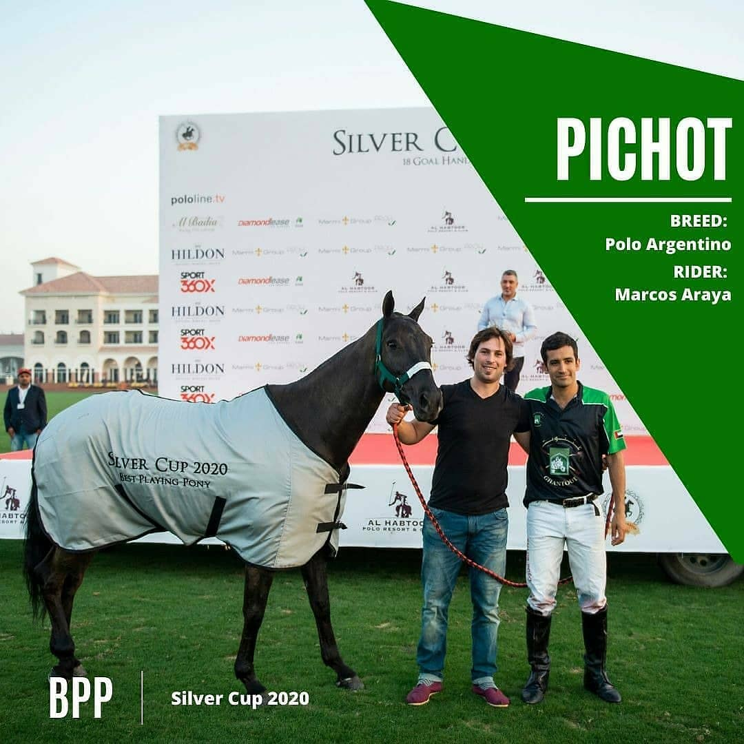 A polo pony with the right combination of intelligence, speed, endurance, strength & temperament with a developed 'love' of the game account for the glory of its rider in playing the #SportofKings  👏🙌 to the most skilled #equine #athletes of the Dubai Polo Gold Cup Series! #BPP https://t.co/USz0YVlOwK