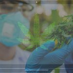 Image for the Tweet beginning: Technologies Helping Keep Cannabis Productive  Through