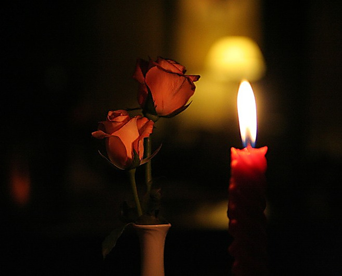разница скорбь фото картинки свечи мак садовый пионовидный