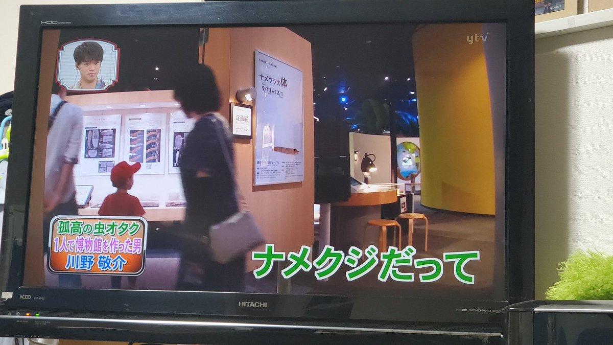 川野 敬介 博物館