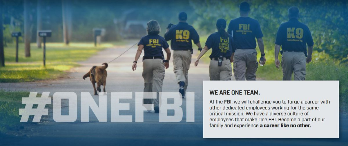 Fbi El Paso On Twitter Nationwide The Fbi Is Looking For Paralegal Specialists Intelligence Analysts And Forensic Examiner It Specialists Be Part Of A Team Working At The Highest Levels To Prevent