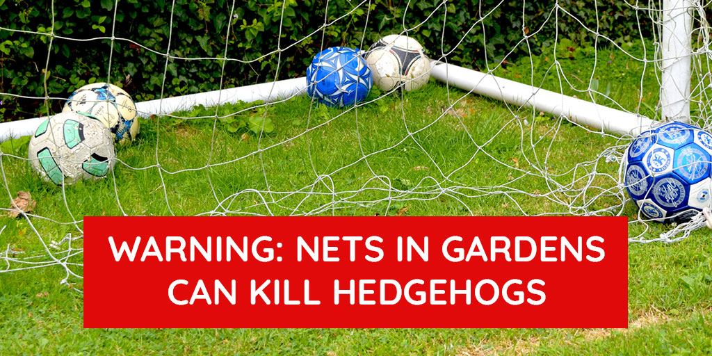 URGENT MESSAGE: We have had an influx of injured hedgehogs that have been tangled in football nets in back gardens. Please, after your children have finished playing, lift the nets up at least 12 inches off the ground to prevent the hogs from becoming tangled. Thank you.