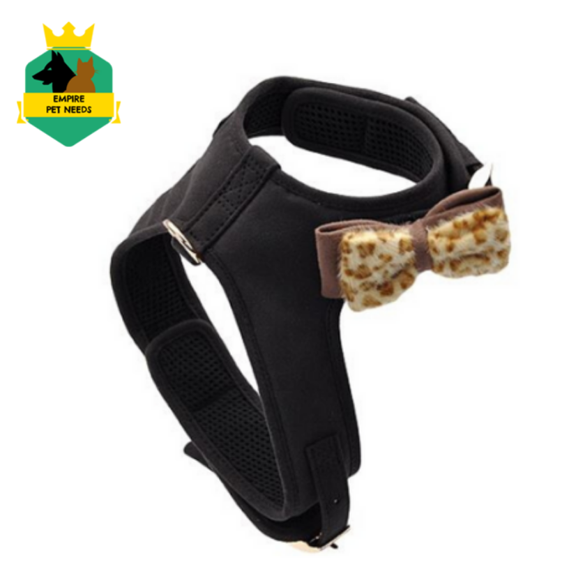 RT  This harness combines fashion with functionality due to its features that come with style. #empirestores #bestdeals #lowestprice #onlineshop #onestopshop #petto…