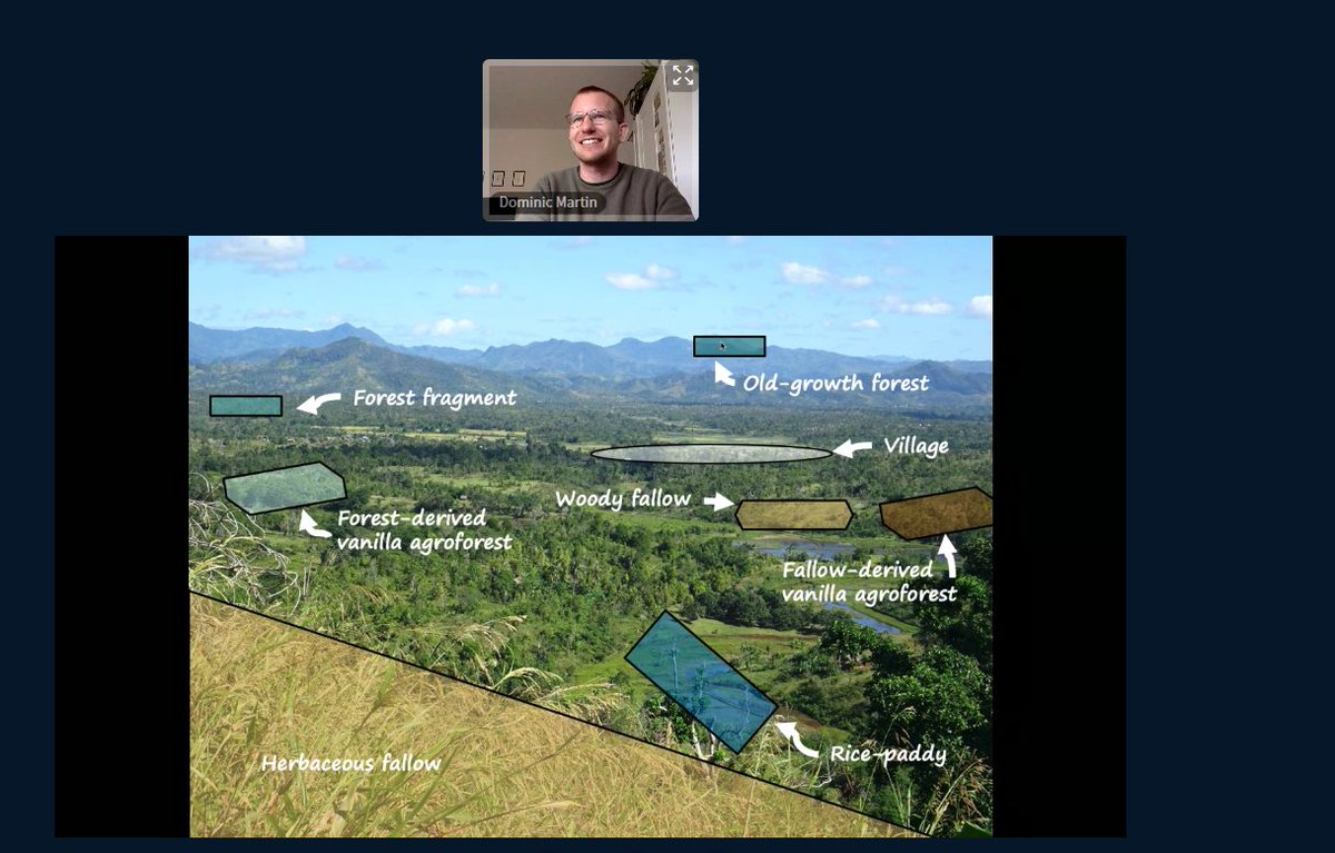 The #sava region in north-eastern #Madagascar: a heterogenic mosaic landscape consisting of #forestfragments , #vanilla #agroforests , #ricepaddies , #hillrice , #fallows and some #oldgrowth #forest . Nice overview by @Dominic_Mart in today's @BioGeoMacro seminar.pic.twitter.com/OnDqe3MoE4