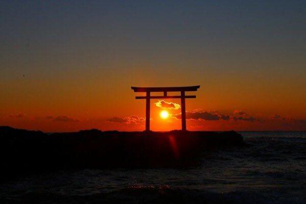 Nino_minimiの画像
