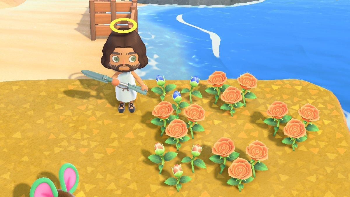 森 オレンジ バラ あつ