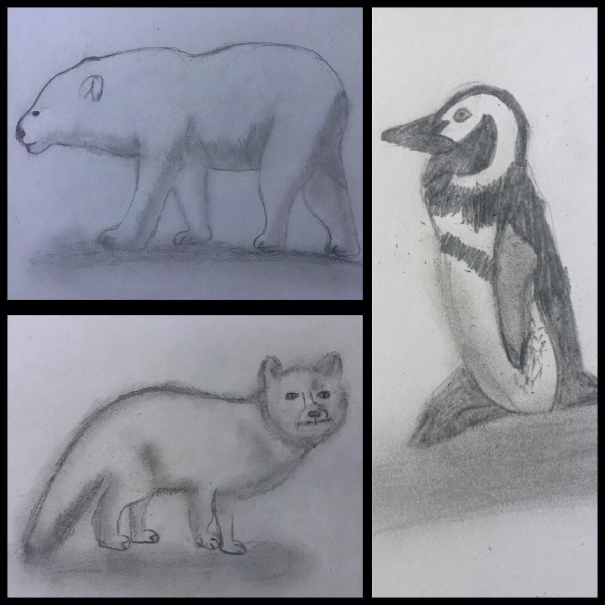 Here are some wonderful sketches by one our Y6 pupils.