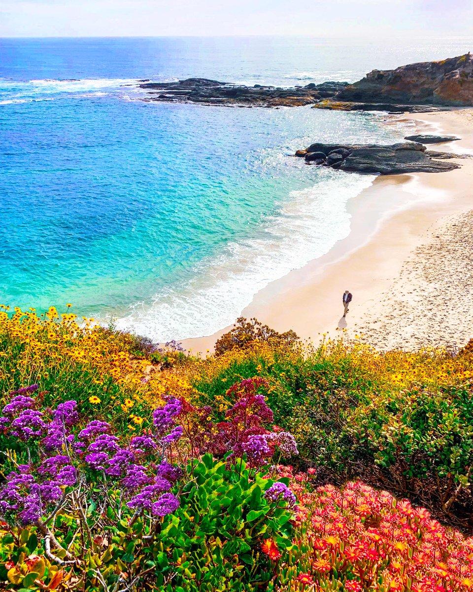 Defeat is simply a signal to press onward. —Helen Keller  #happiness #positivity #oceanview #naturephotography #natureishealing #naturelover #Philosophy #positivethinking #california #losangeles #beach #keepgoing #positivequotepic.twitter.com/czdsDUaYnn
