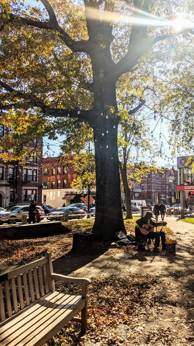 Pumpkin spice and everything nice  #harvardsquare #yeargoneby #fall2019 #sunnysideup